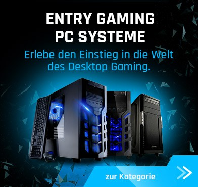 Entry Gaming Notebooks
