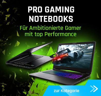 Pro Gaming Notebooks